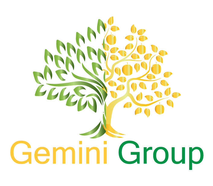 Gemini Group Mexico
